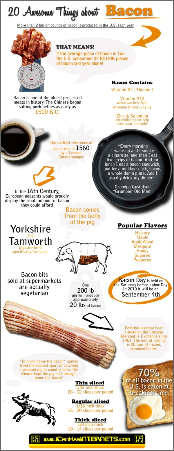 Bacon Facts  Crazy Things About Bacon You Never Knew