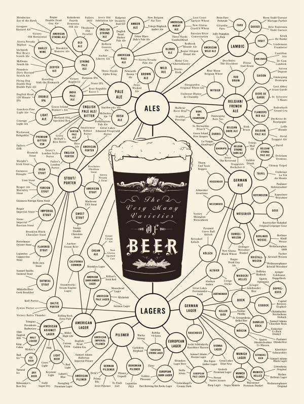 Beer Types  How to Identify Different Beer Types
