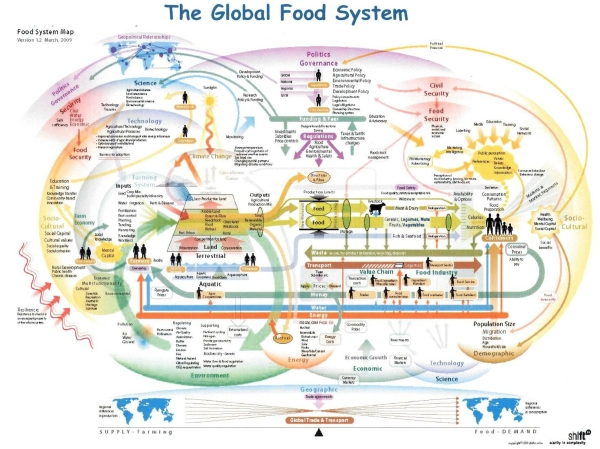 Global Food System  How the Global Food System Works