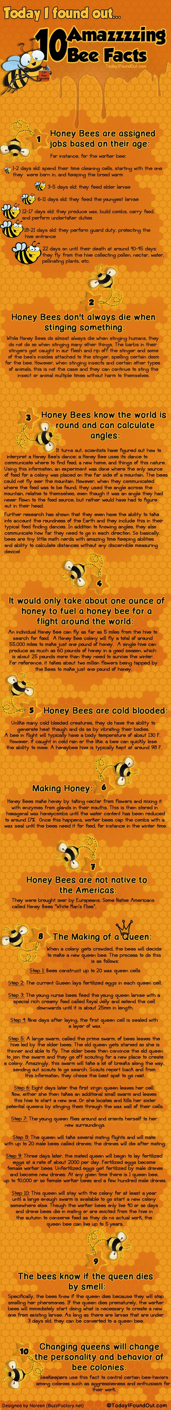 For those who dont know, bees job are assigned  based on their age. And they dont always die if they have stinged something. Honey bees, are also smart, they know […]