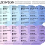 <b>Causes of Death</b>
