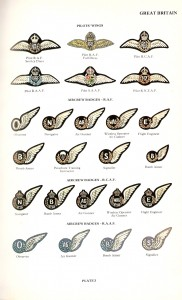 Commonwealth Air Force Wings