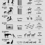 Cost of Pets