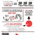 <b>DNA Facts</b>