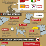 <b>Dog Barking Facts</b>