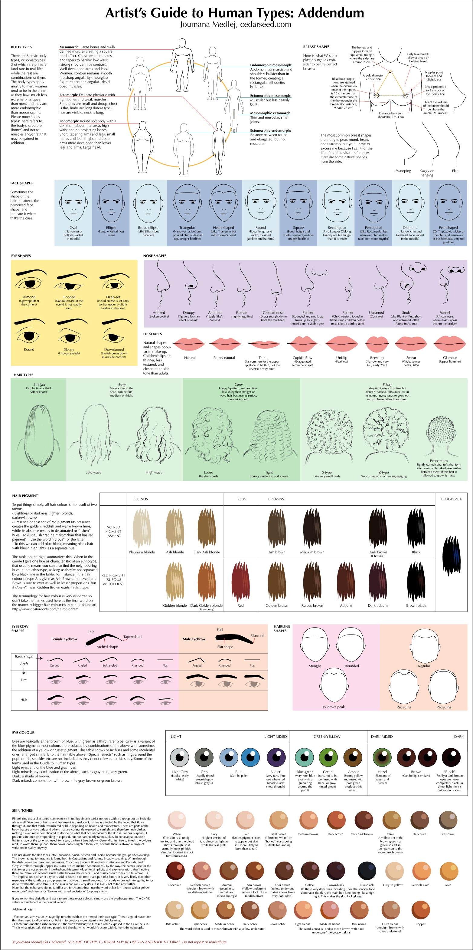 Artist guides to human type. You can draw them by their body types, breast, face shapes, eye shapes, nose shapes,lip shapes, hair type, hair pigment, their eyebrow shapes, eye colour […]