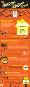Household Electric Use