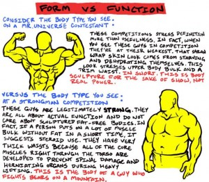 Muscle Form vs Function