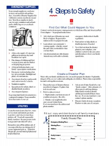 PS Family Disaster Plan (2)