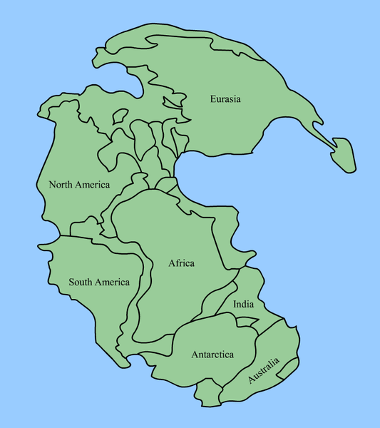 Pangaea was a super continent that existed around the late Paleozoic and early Mesozoic periods, structuring around the reach of 300 million years in the past and beginning to soften […]