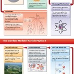 <b>Particle Physics</b>
