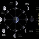 <b>Graphic of Phases of the Moon</b>