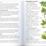 <b>SAS 036 - Edible Plants</b>