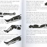 <b>SAS 148 - First Aid &amp; Fractures</b>