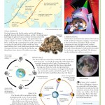 SE - Lunar Influence on Earth (2)