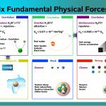 <b>Six Fundamental Physical Forces</b>