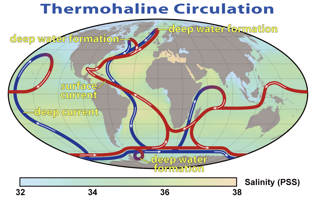 The term Thermohaline Circulation (THC) points to a part of the great-scale sea flow that is determined by worldwide thickness slopes made by surface warm and freshwater fluxes. The descriptive […]