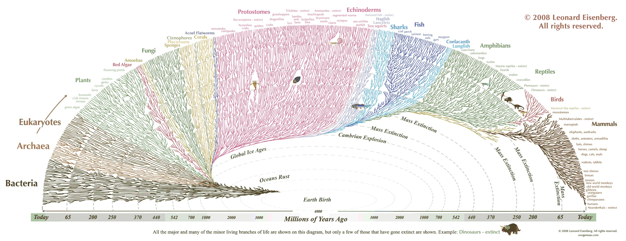 This infographic shows how diverse life is and how life developed over time. It shows the first single-cell organisms, evolving over millions of years, to mammals today. Extinction periods are […]