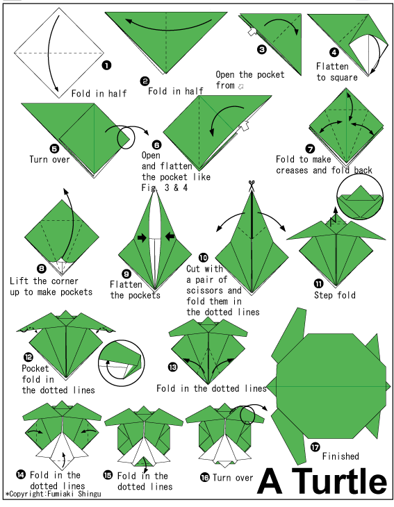 Cute turtle is what you want? Follow this simple steps from 1-16 and you can already have your own turtle from a paper.