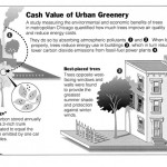 <b>Value of Urban Greenery</b>