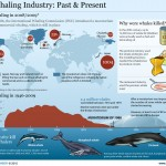 <b>Whaling Industry</b>