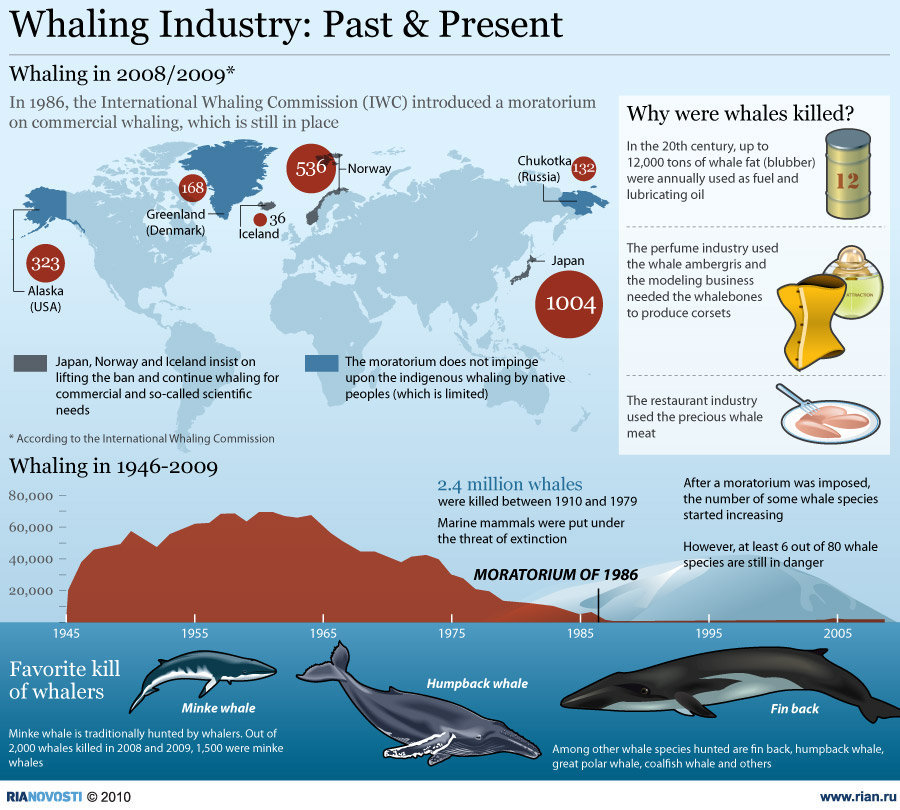 Whales are just some of the animals that are not so lucky. In 20th century, they were killed and uses the whale fat (blubber) as a fuel and lubricating oils, […]