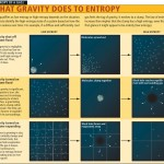 <b>What Gravity does to Entropy</b>