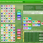 <b>The venue and statistics of 2011 Cricket World Cup. </b>