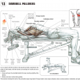 Planning Lie upper back perpendicular on seat. Flex hips marginally. Handle one dumbbell from behind or from side with both hands under internal plate of dumbbell. Position dumbbell over midsection […]