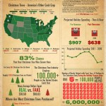 <b>Where Your Christmas Tree Came From</b>
