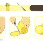 <b>How to Properly Cut a Pineapple</b>