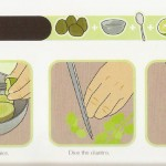 <b>How to Prepare the Best Guacamole</b>