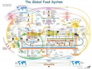The Global Food System Infographic Map