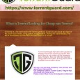 A torrent is a file sent via the BitTorrent protocol. It can be just about any type of file, such as a movie, song, game, or application. During the transmission, […]